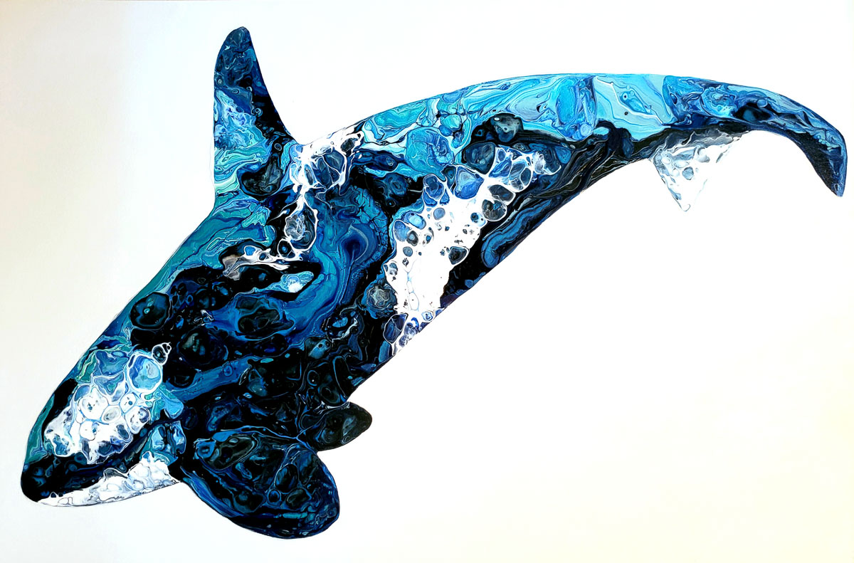 """Orca"" by Hailey Light"