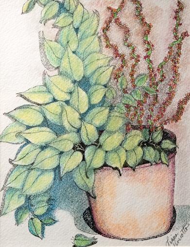 Flower Again, Liana Pivirotti