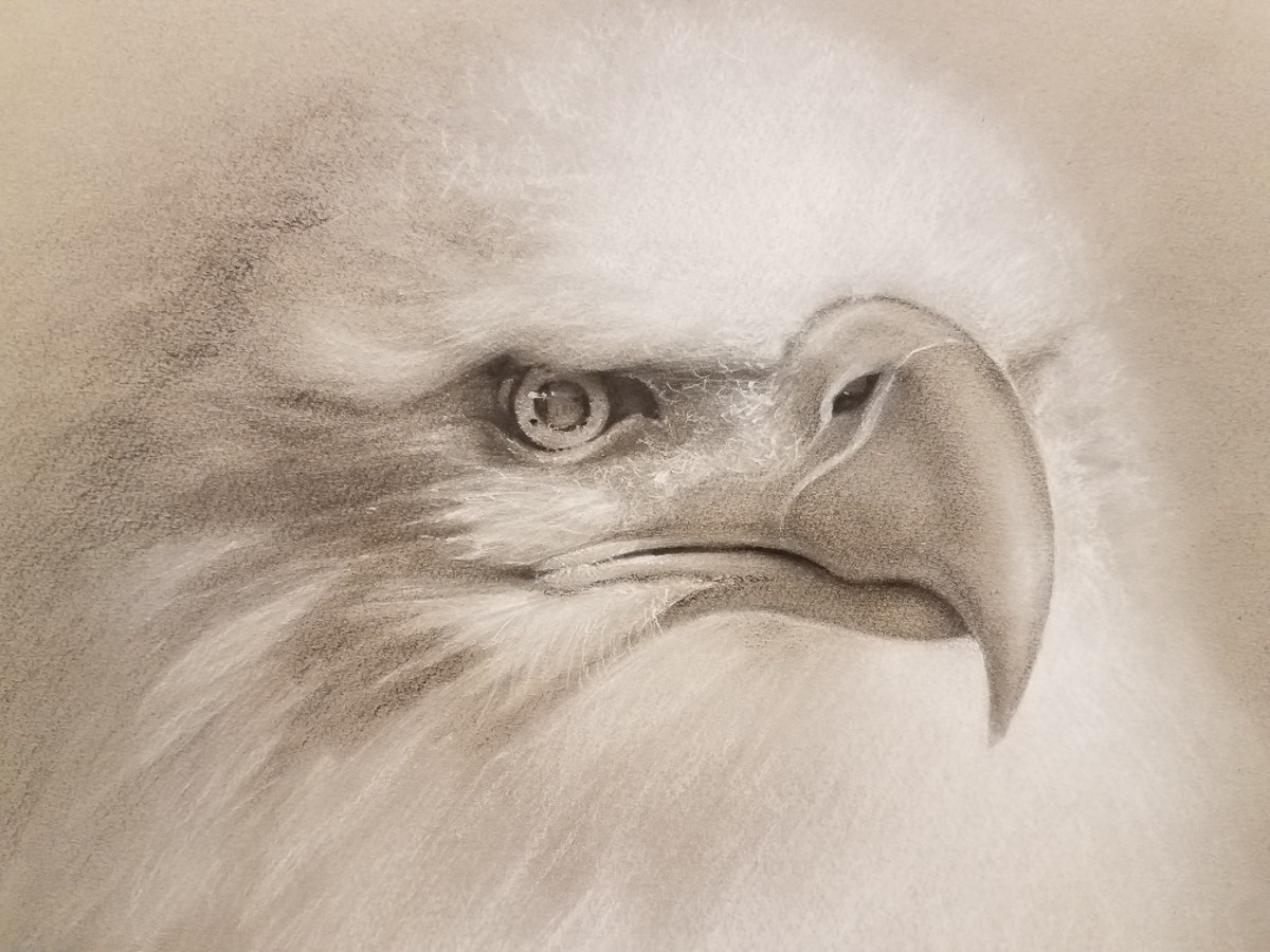 """The Eagle Lives"" by Carol Haynes"