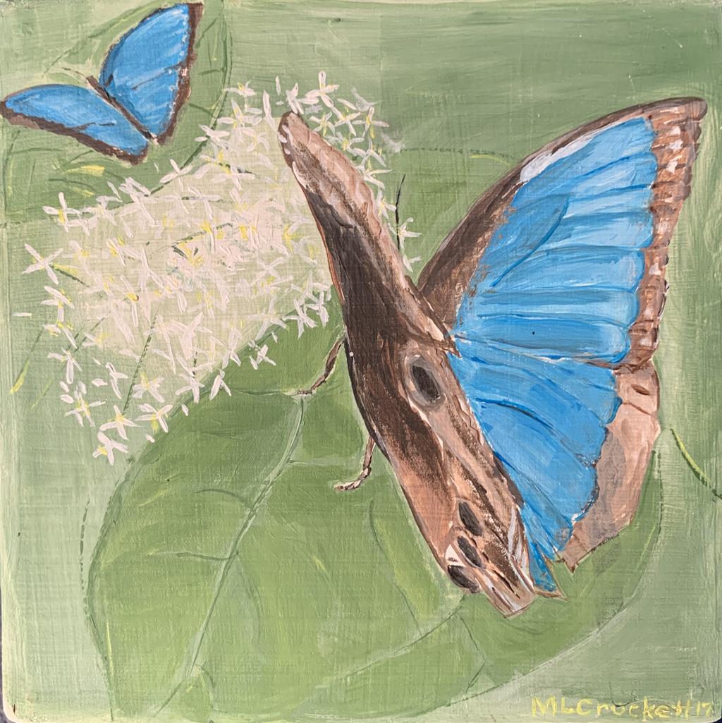 """""""Butterfly Blue,"""""""