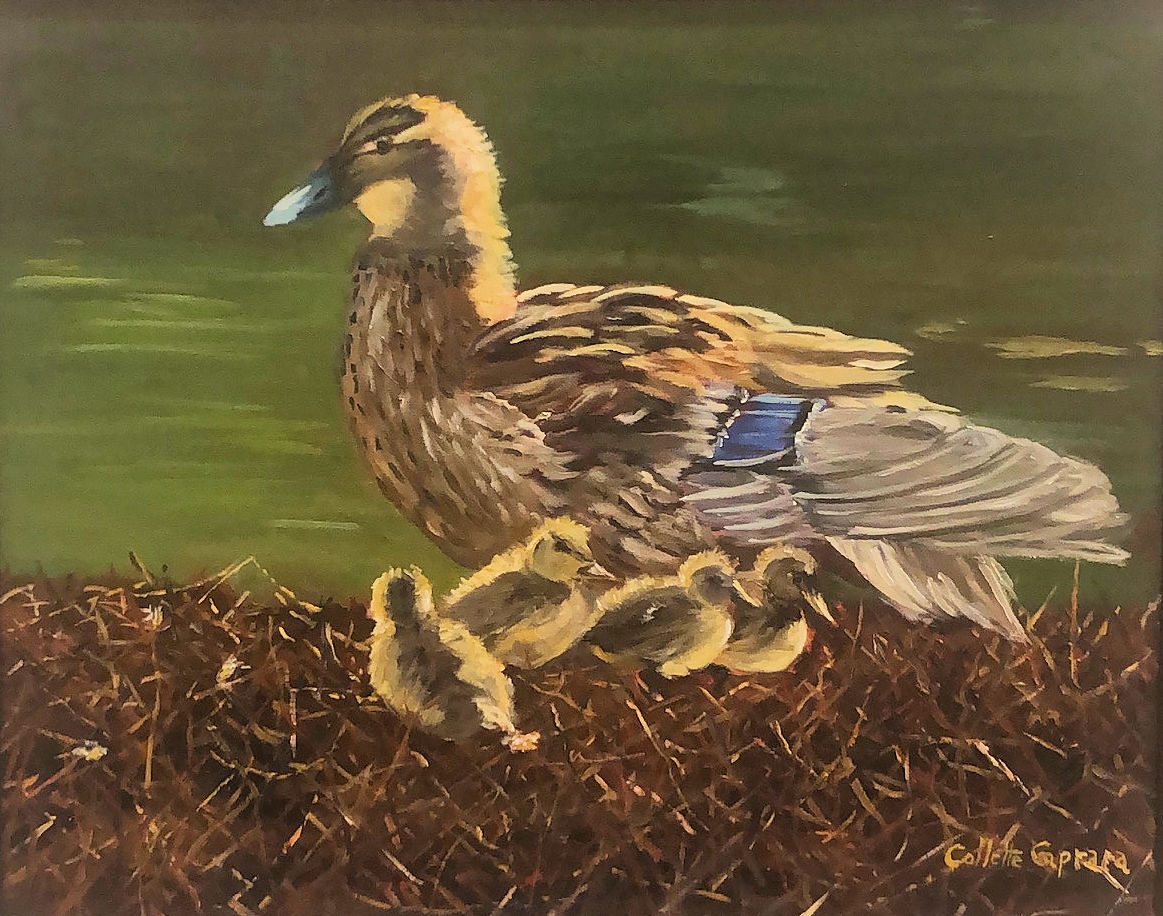 """Ducklings Explore,"" by Collette Caprara"