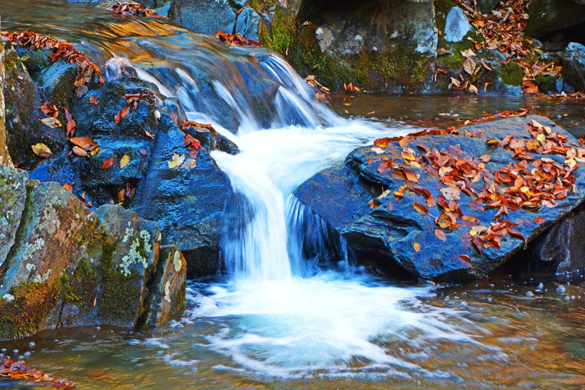 """""""Shenandoah Waterfall"""", by Penny A Parrish"""