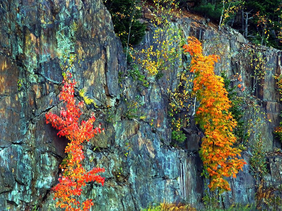 New Hampshire Fall, Norma Woodward