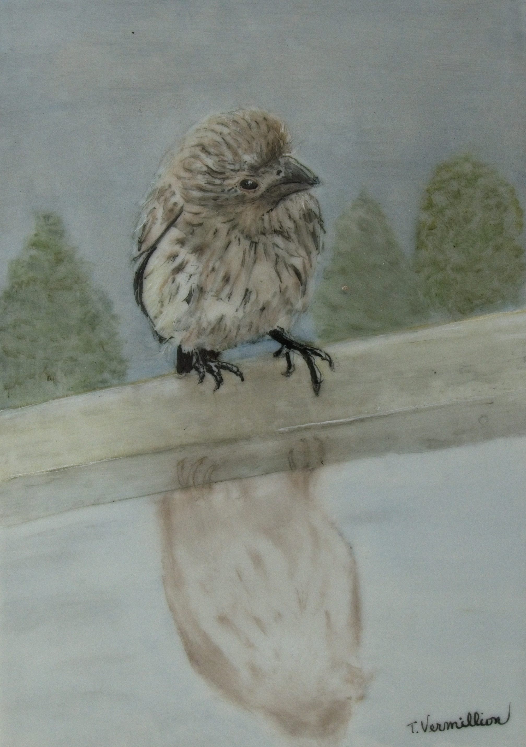 """Bird Reflection,"" by Trish Vermillion."