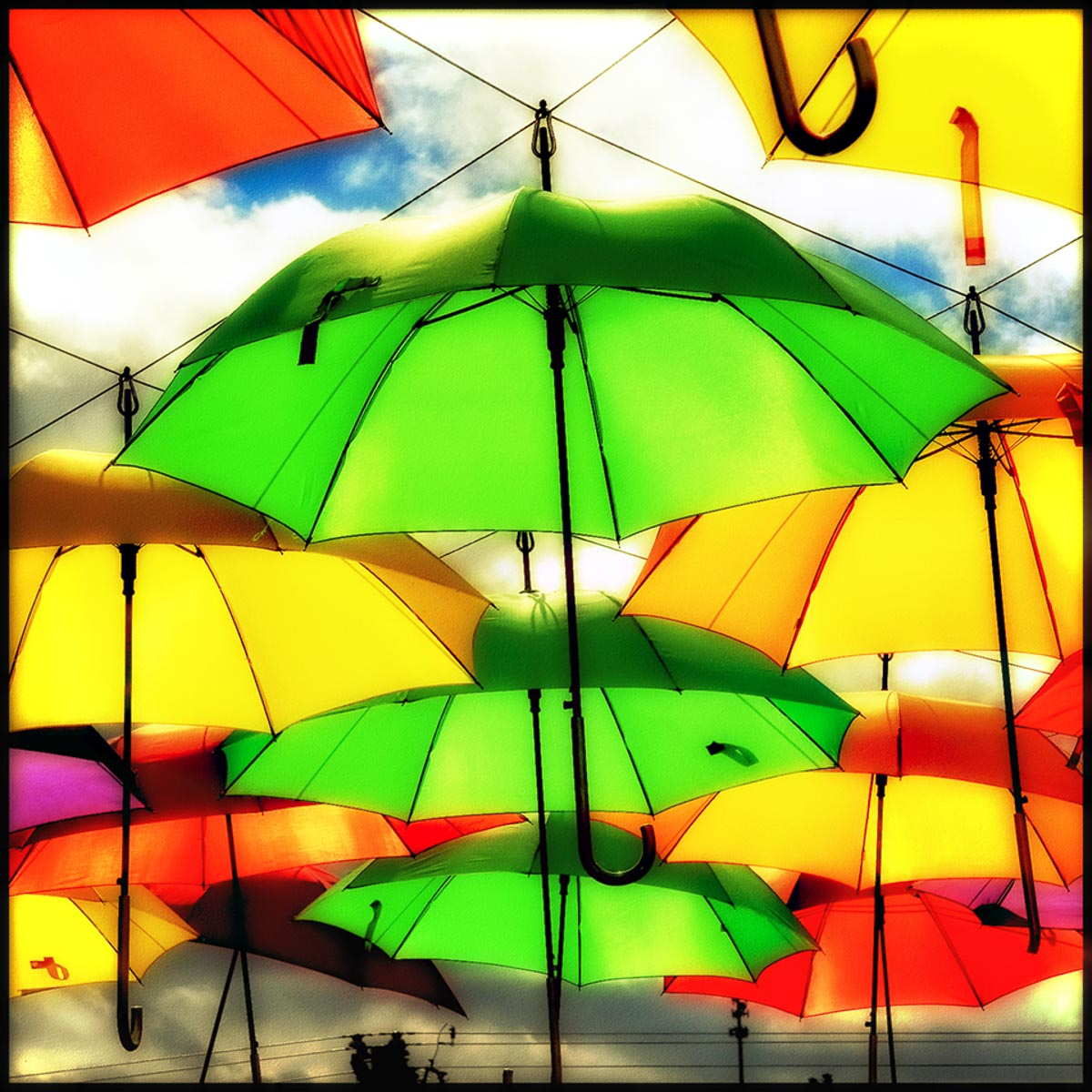 """Umbrellas Overhead,"" by Norma Woodward."