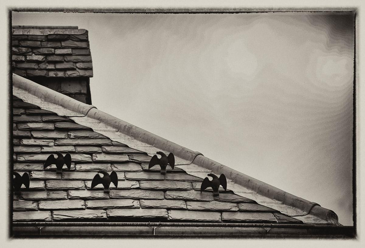 """Flightless Buffett House"" by Penny A Parrish"