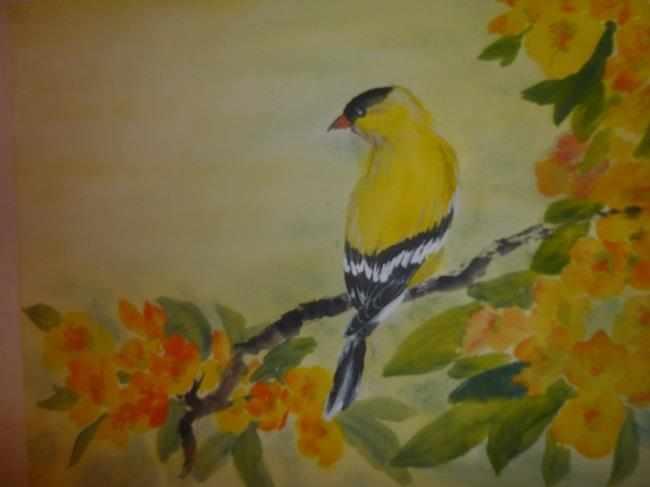 Gold Finch, Carol Waite