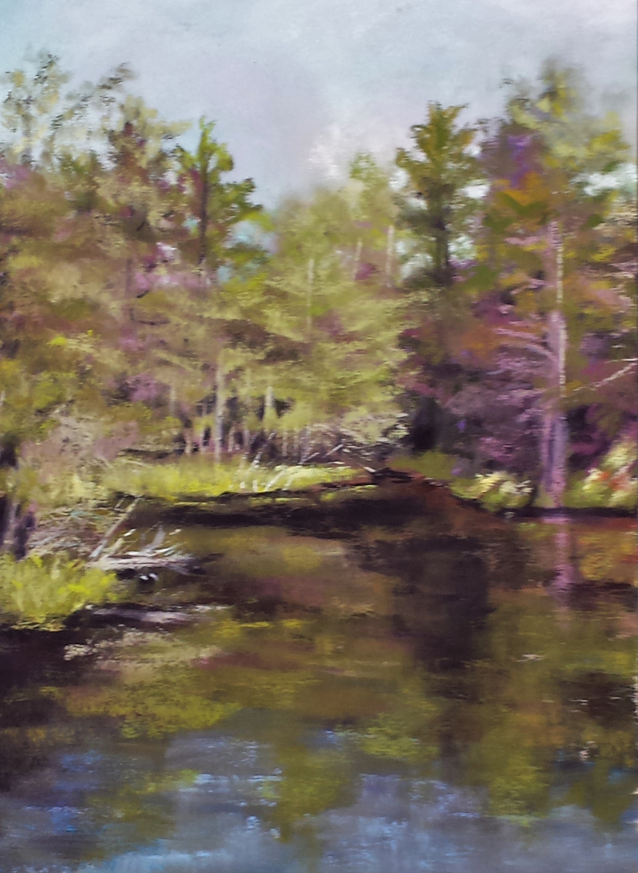 Black Pond, K.Willingham