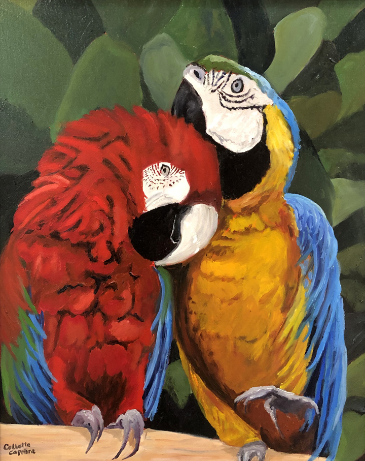 Parrots, Collette Caprara