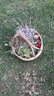 flower basket.jpg