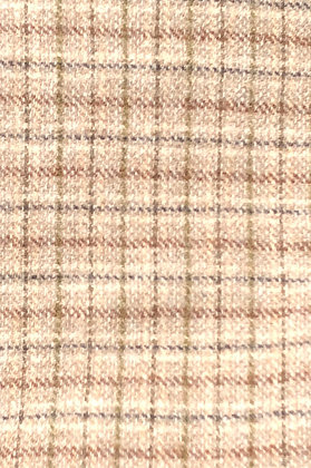 Small earth tone plaid