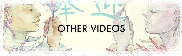 NEWBANNERS_othervideos.jpg