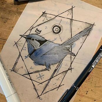 Splendid Fairy Wren Available to tattoo