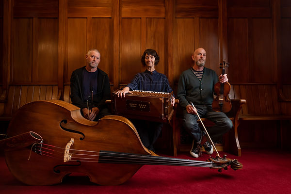 double bass, harmonium, fiddle, Plan 9, The Bewilderness