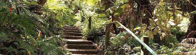 1000-Steps-e1519308560840-1320x371.jpg