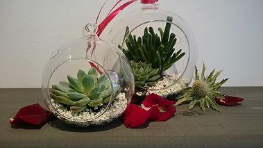 Melbourne Florist Gift Pic 19.JPG