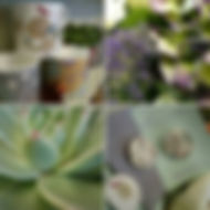 Melbourne Florist Gift Pic 10 .jpg