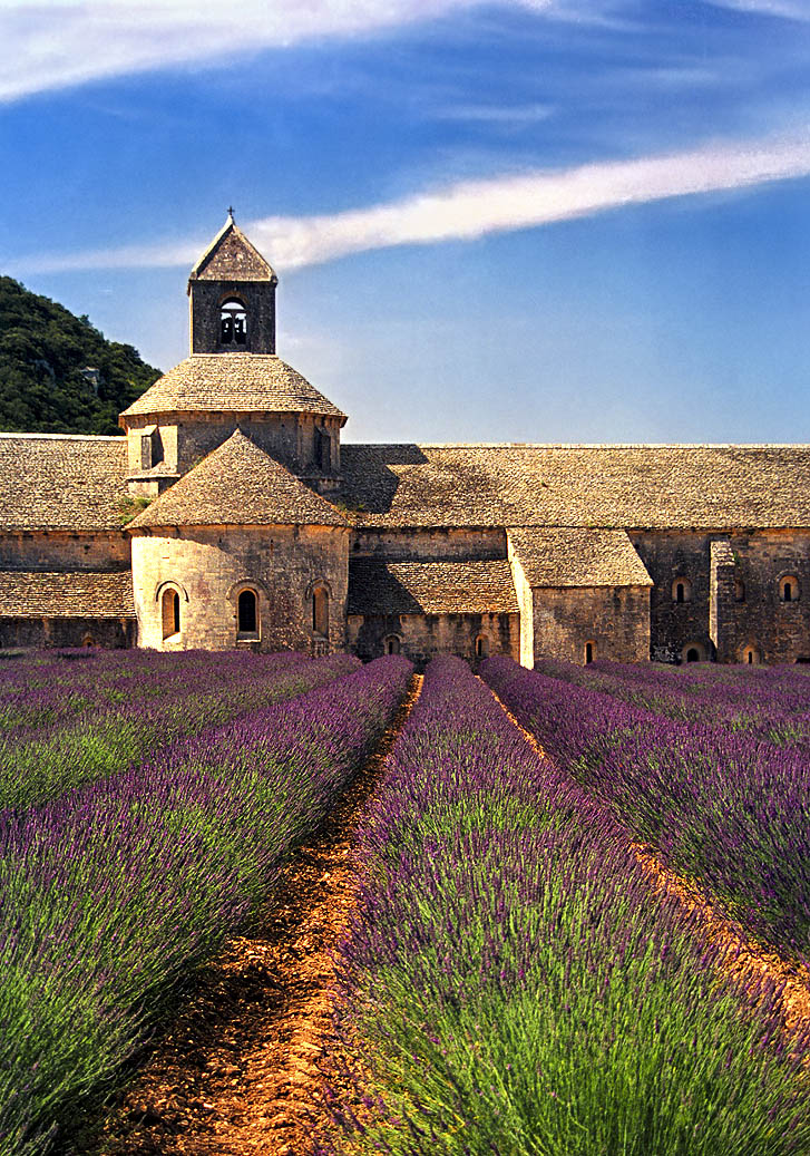 France - Sénanque Abbey