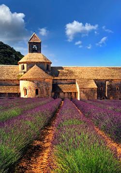 France - Sénanque Abbey