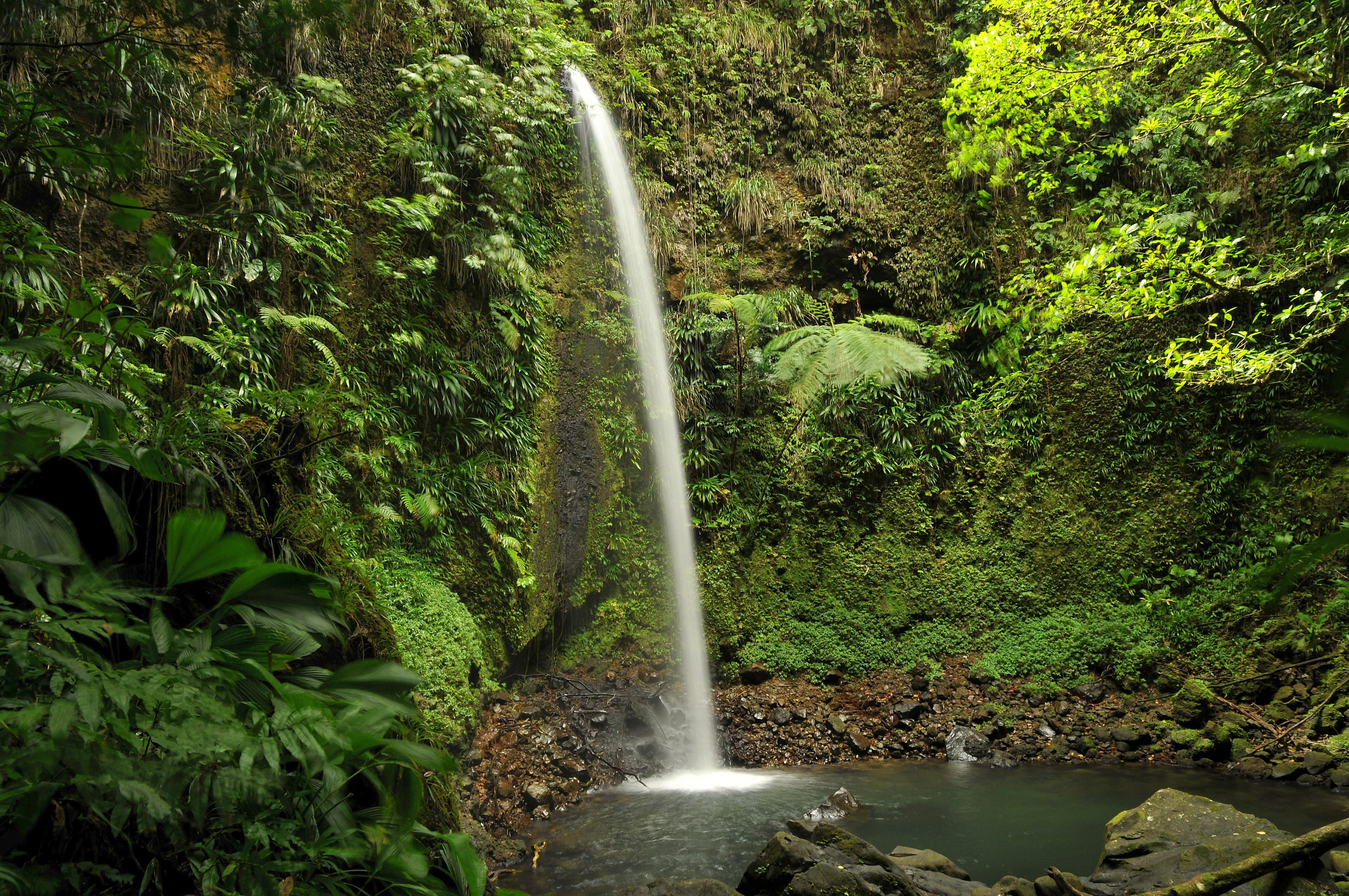 Dominica - Spanny Falls II