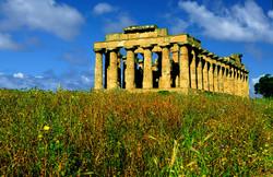 Selinunte - Temple