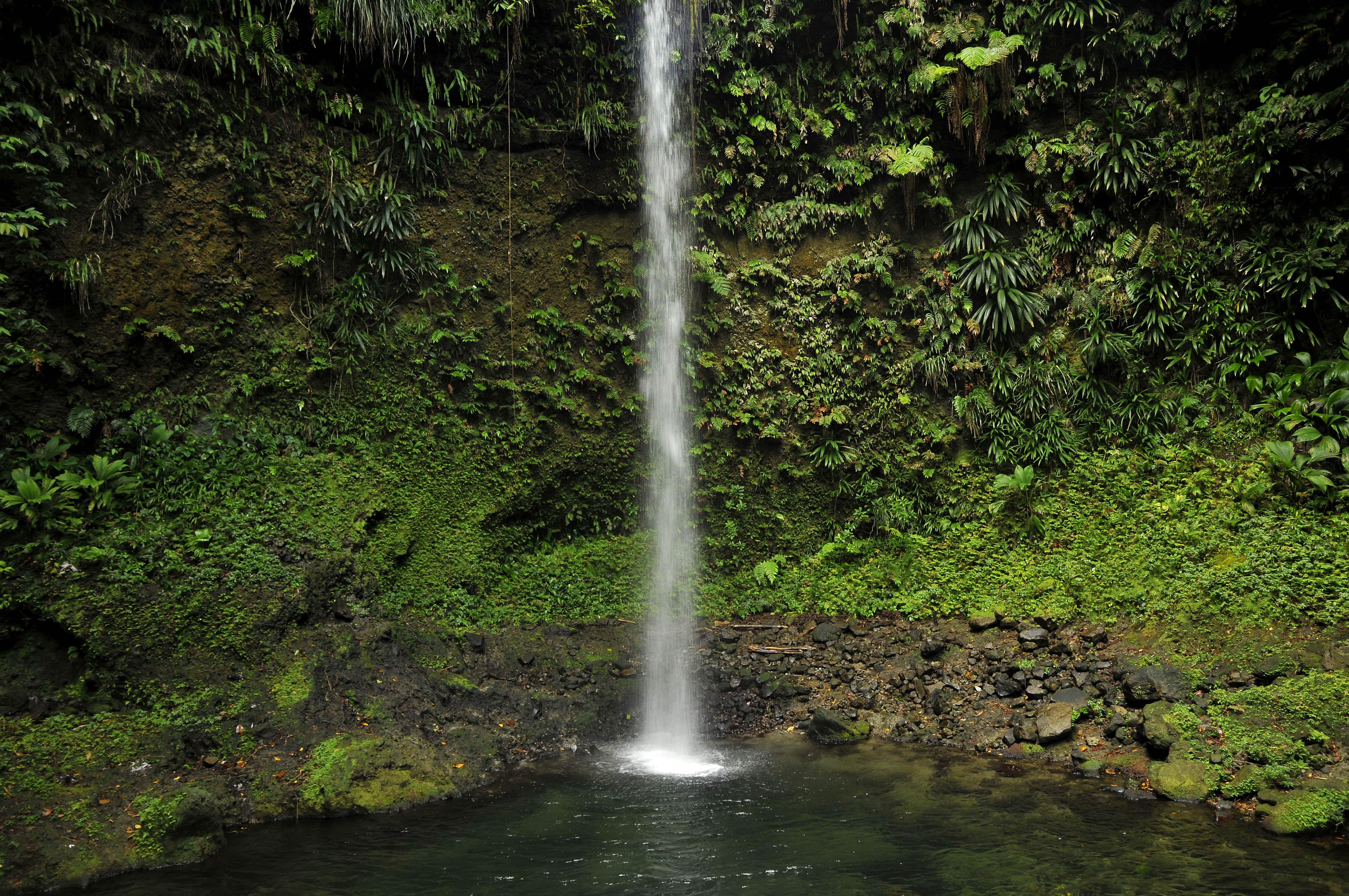 Dominica - Spanny Falls I