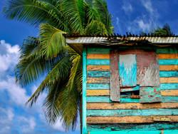 Dominica - Shack