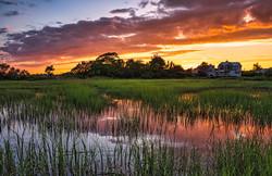 Wetland Sunset