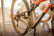 wilier_cape_epic_0237.jpg