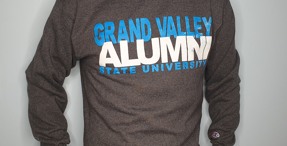 Champion Varsity Sweatshirt (Medium)