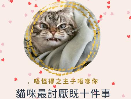 「🐱知識」貓咪最討厭嘅10件事情