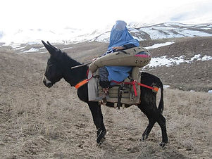 saddle in use in Afghanistan