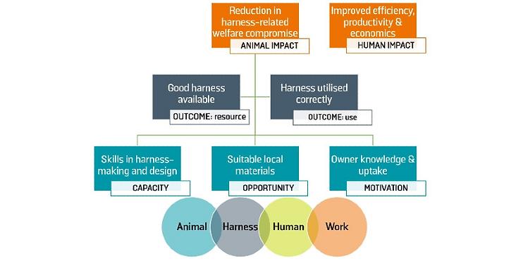 Animal human impact of harnessing work.p