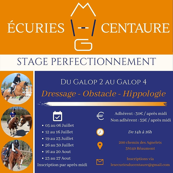Stage Perf' Eté 2021.jpg