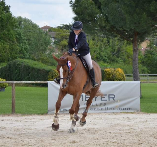 Hunter Equitation