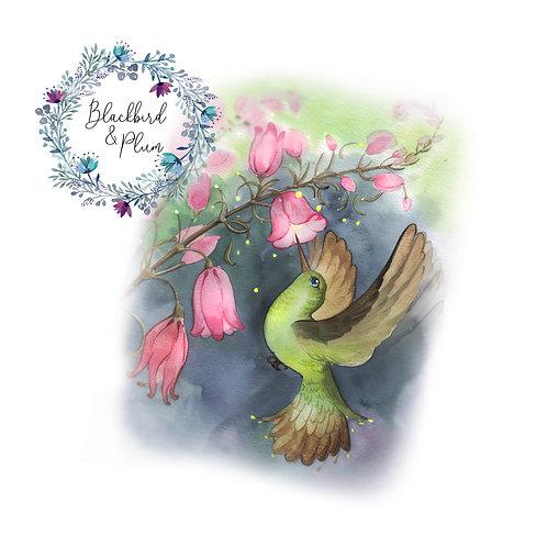 Week 12 - Flutter