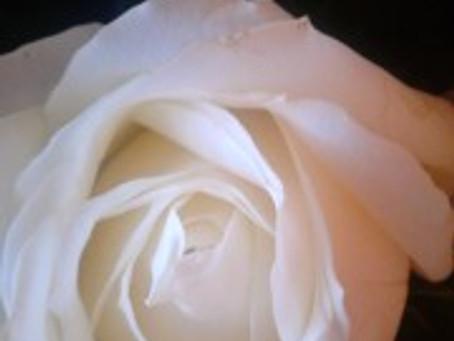 Mensaje de Lady Nada: Sois Verdaderos y Puros Seres de Luz