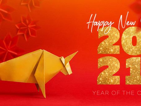 HAPPY NEW YEAR FROM RJM !