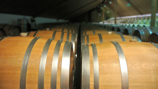 Wine barrels cleaned with UV water