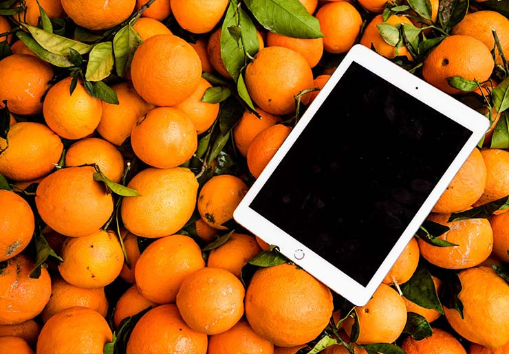 apple ipad device place over lots of oranges