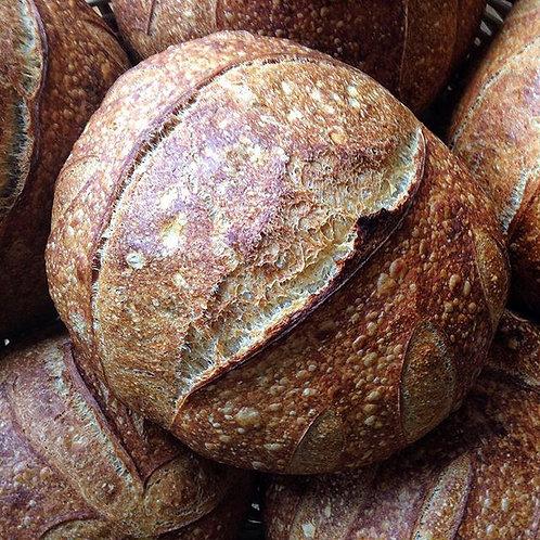 Pão de Campanha - Sexta feira