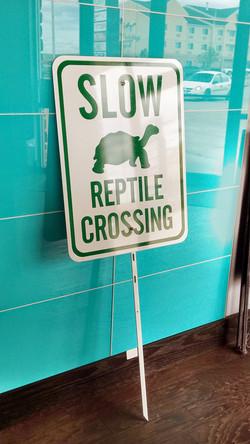 Slow Reptile Crossing