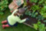 iStock-157504780.jpg