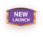 new launch.png