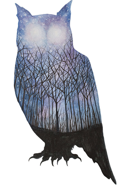 Owl - Art Print