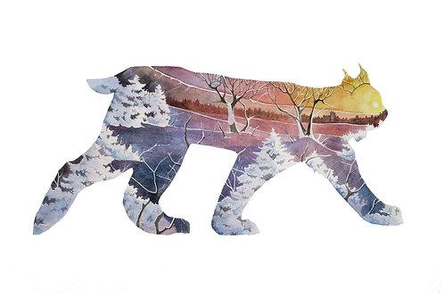 Lynx - Art Print