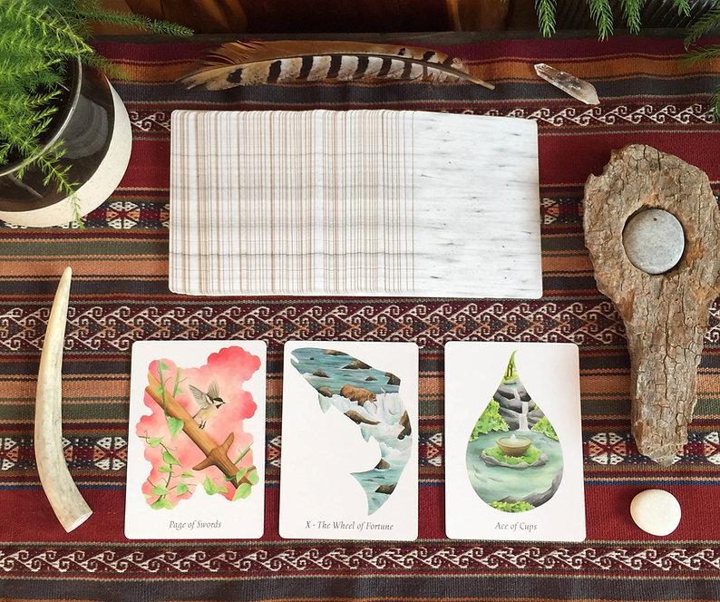 WilderWoven-Tarot-Deck-Cards