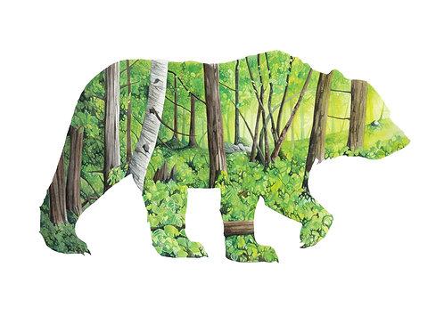 Bear - Art Print