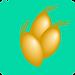 Teal Gold Logo_edited.png