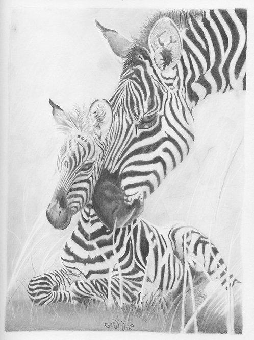 """""""Mommy & Baby Zebra"""""""